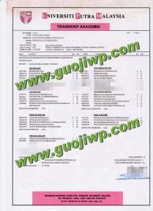 buy UPM transcript