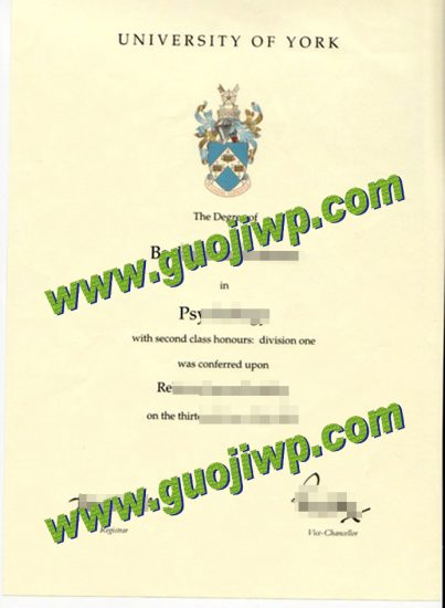 buy University of York diploma
