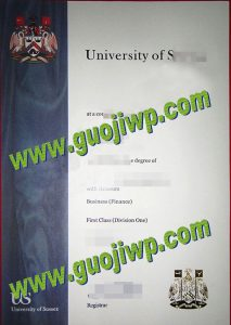 University of Sussex diploma