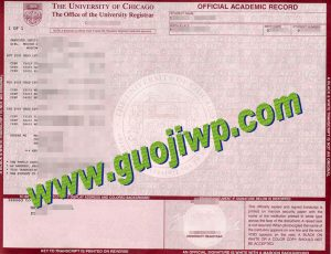 University of Chicago transcript