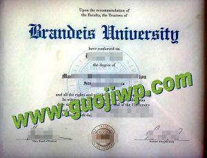 Brandeis University diploma