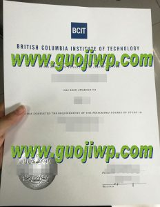 fake BCIT diploma