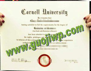 buy Cornell University certificate