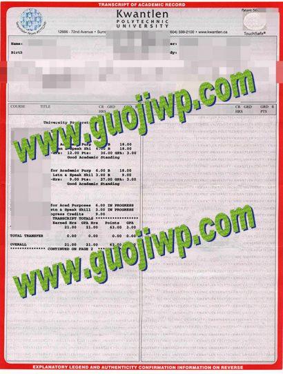 fake KPU transcript