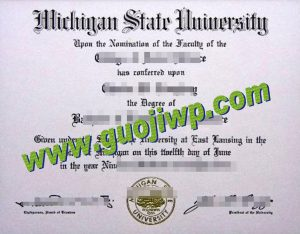 buy MSU degree certificate