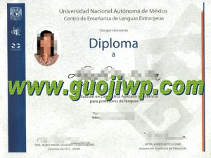 fake UNAM degree certificate