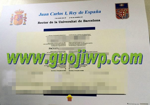 fake University of Barcelona degree certificate