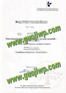 Order fake University of Southern Denmark diploma, fake degree certificate