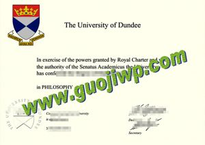 University of Dundee degree