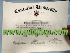 fake Concordia University diploma