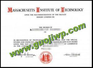 fake MIT degree certificate