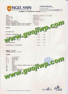 Ngee Ann Polytechnic transcript