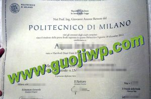 Politecnico di Milano degree
