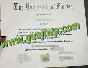University of Florida fake degree